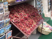 Guide Books and Chillies - www.countrybagging.com